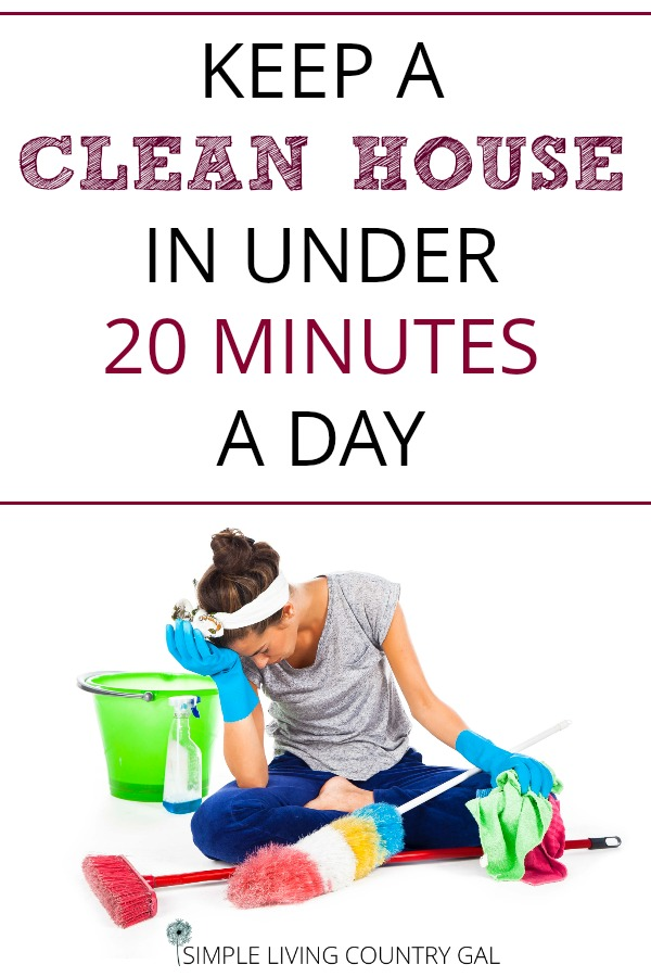 clean your house in 20 minutes