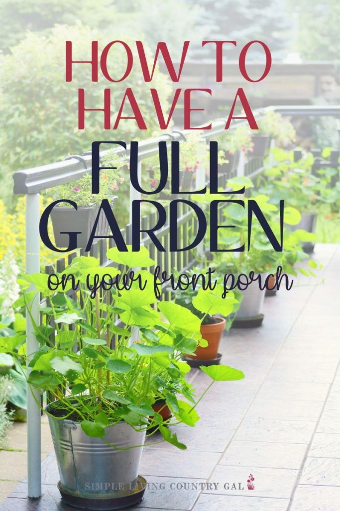 Tips on growing huge tomatoes in containers on your porch. How to have a garden right outside your own back door. Gardening tips for beginners and a step by step on how to grow veggies in pots.