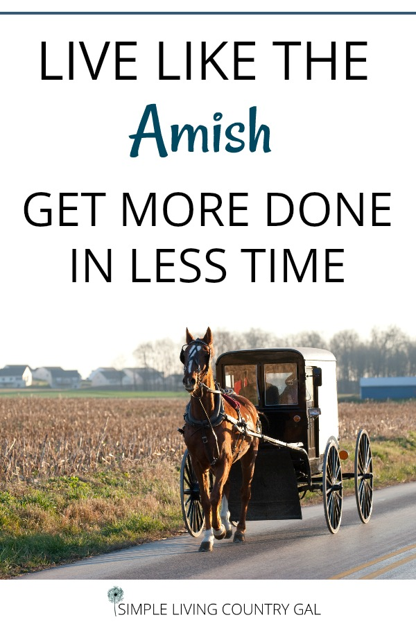 Take a cue from our Amish friends. Learn how to get more done in a fraction of the time just by being focused and present. An Amish lifestyle can do more than inspire, it can motivate and allow us to get more done quickly so we can do what we love. #productivity #amishliving #simpleliving