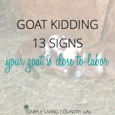 GOAT KIDDING SIGNS