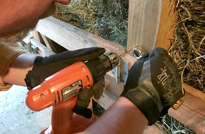 drilling a eye hook. how to tether your dairy goats to easily feed rowdy goats.