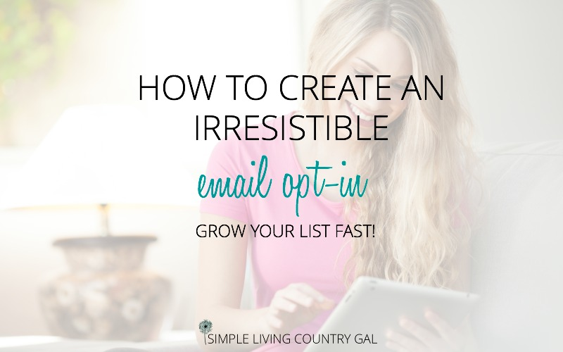 How to Create the Perfect Freebie to Grow Your Email List FAST!