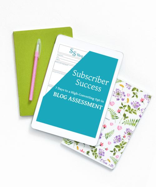 subscriber success blog assessment