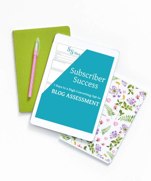 subscriber success blog assessment