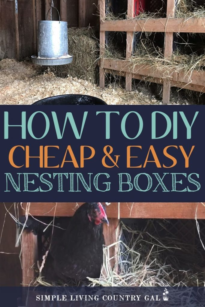 diy chicken nesting boxes for cheap
