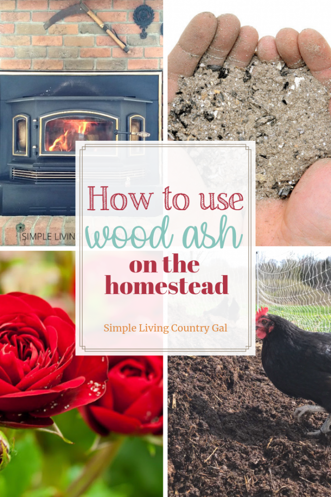 Using wood ash in the garden and in your compost pile is an inexpensive way to fight pest and improve soil quality. Before you toss your wood ash read these tips on how to improve the quality of your plants and chickens too. Yes, all with a little wood ash! #garden #gardeningtips #compost #chickens #chickencoops