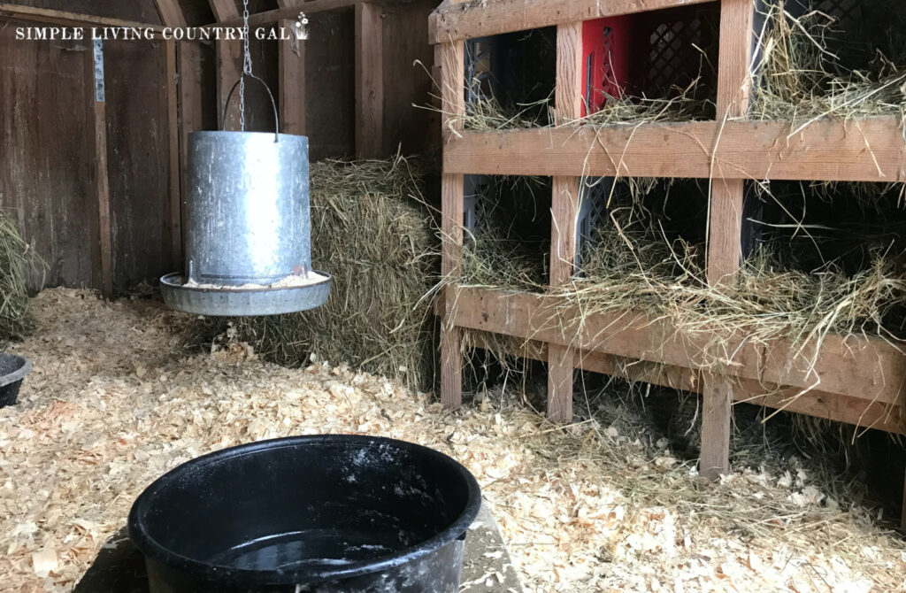 milk crate nesting boxes inside of a chicken coop
