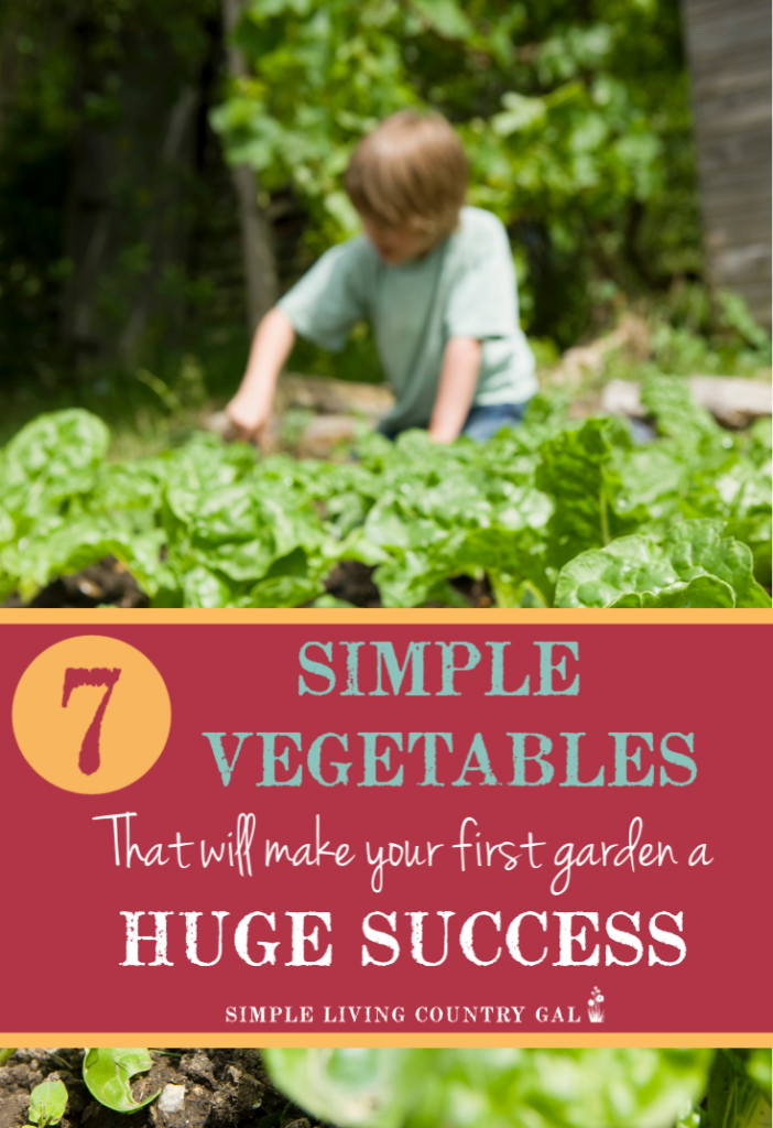 This list will help you grow a successful garden. First time gardening vegetables.