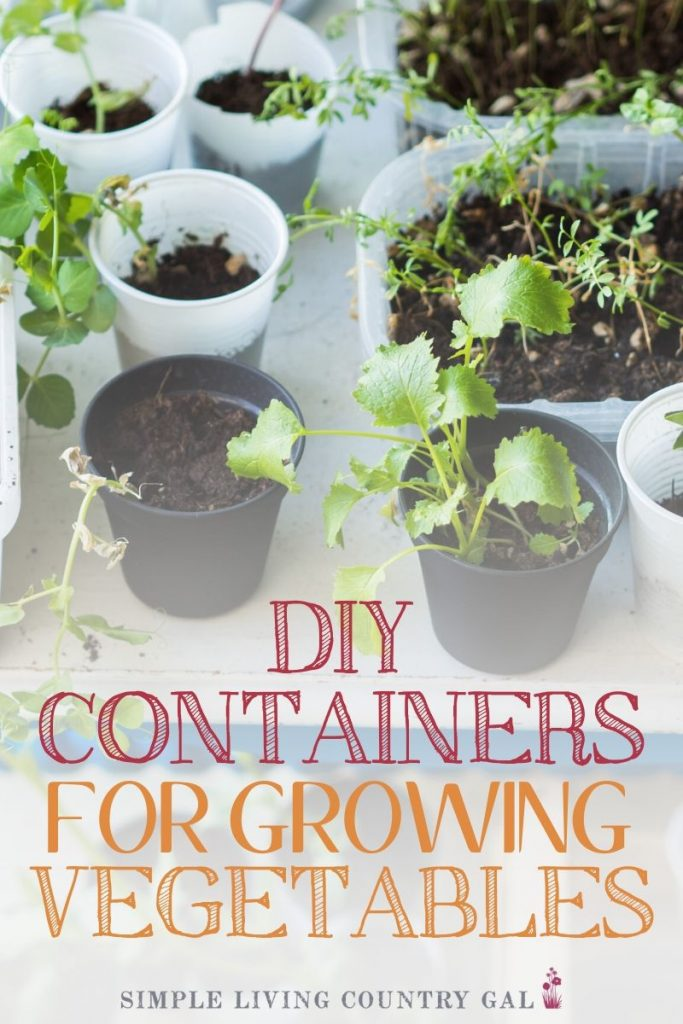 diy containers for growing vegetables