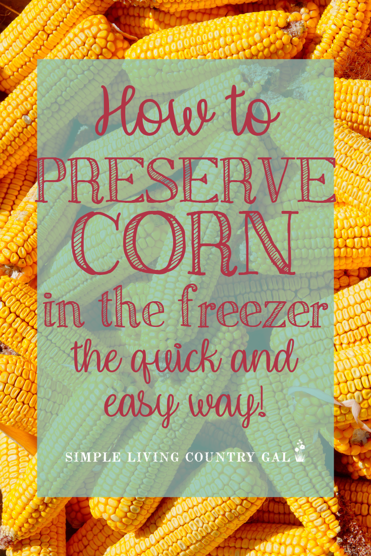 When I first starting preserving food for my family this was the recipe I started with. Super simple and so so good I would fill my freezer for the entire winter for just a few dollars. #freezecorn #canning #preservefood #freezeproduce