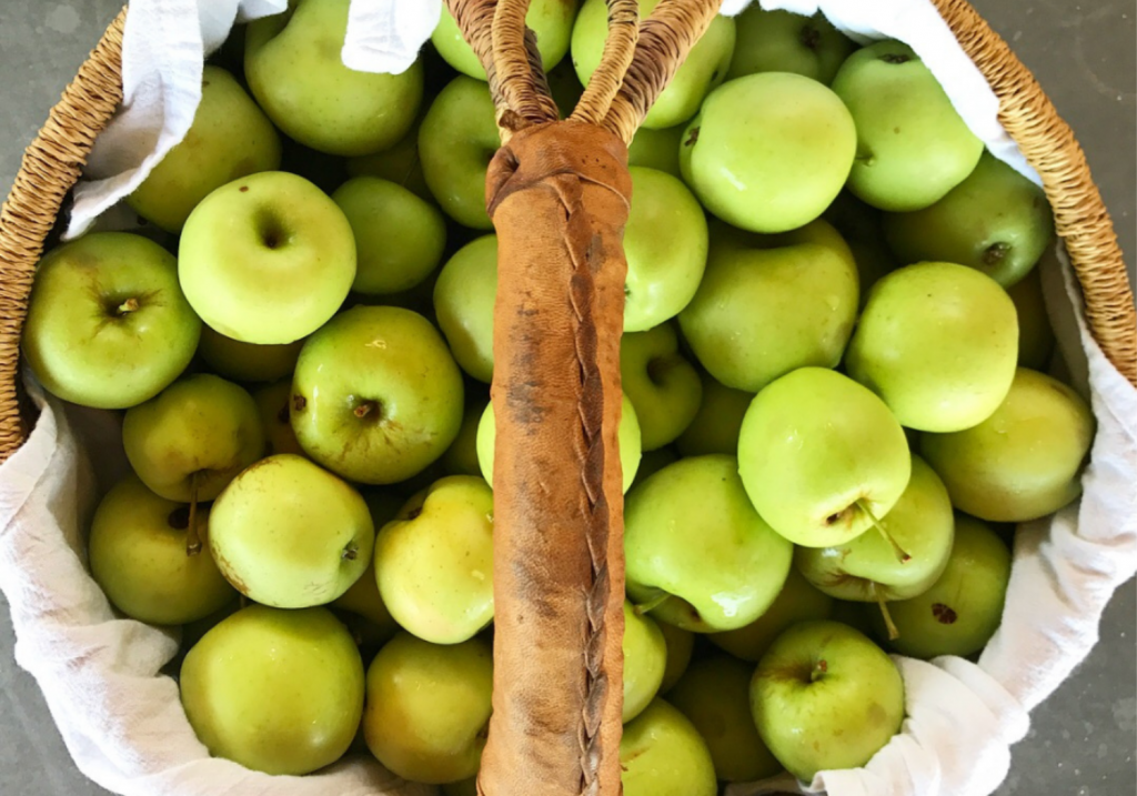 Basket of fresh-picked apples. How to can applesauce a beginners guide
