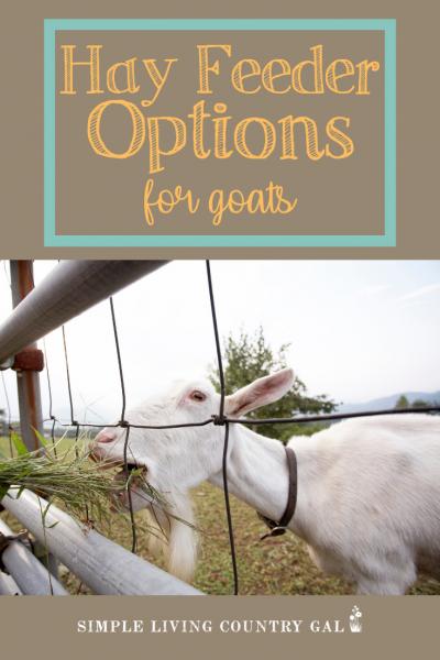 Goat Hay Feeders