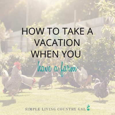 Are you afraid to add animals to your homestead because you think you might be tied down to your farm? Don't worry hiring trusted help to watch things while you are away is easier than you think. Follow these tips to have someone you trust to keep an eye on your home and farm while you are away. #homestead #homesteadlife #farmlife