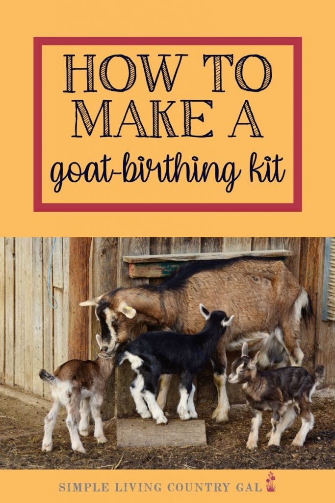 It's almost time for your goat to kid, are you ready? Make sure you are just in case your goat needs help kidding. By having a fully stocked goat birthing kit prepped and ready to go you will be better able to handle just about anything that might come up. #goatkidding #goatbirthingkit #babygoats #dairygoats