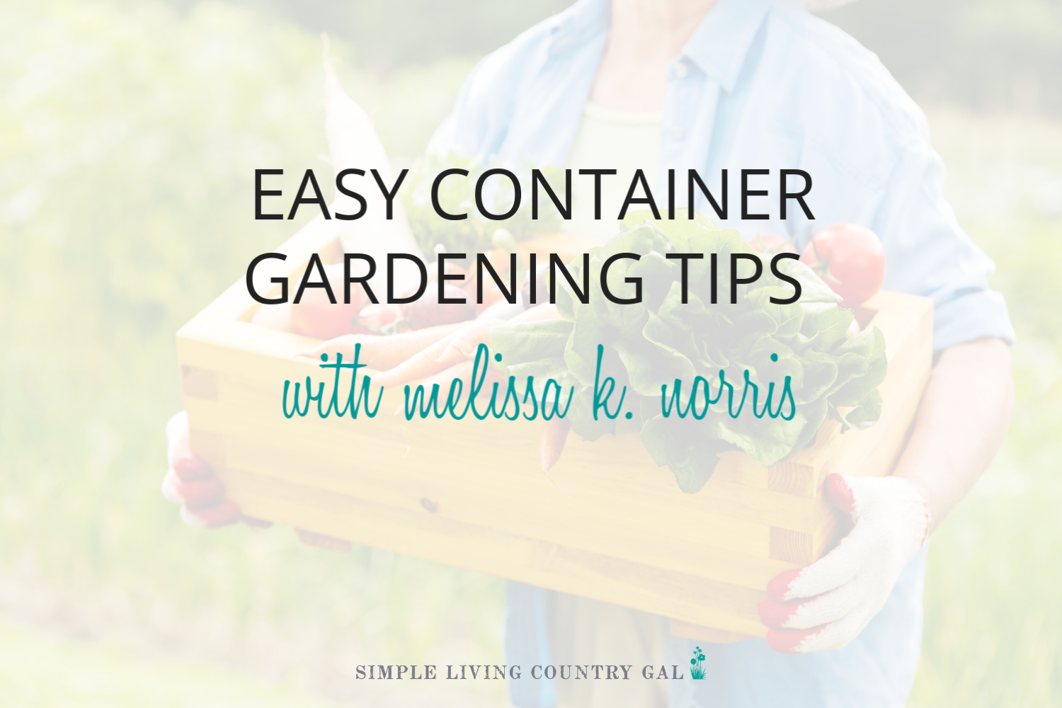 Easy Container Gardening Tips for Beginners – an Interview with Melissa K. Norris