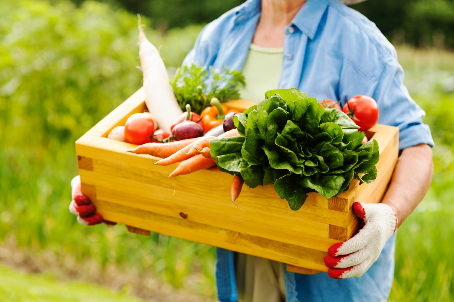 woman holding vegetables from easy container gardening tips
