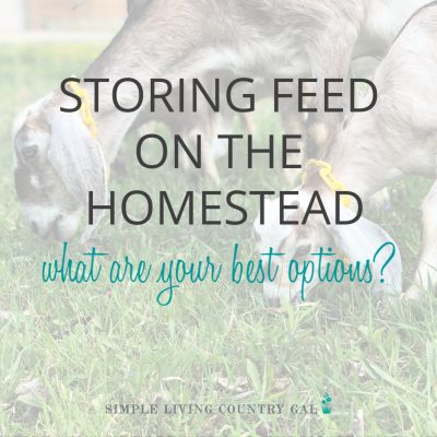 Keeping feed fresh and free of mice can be tricky on a homestead. Let's face it, any feed especially chicken feed is expensive so keeping it fresh is a big part of a hobby farm. These feed storage container ideas is a good place to start before you invest money in feed storage and set up your feed room. #feedstorage #chickenfeed #chickenfeedbin #chickencoop