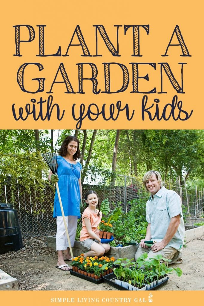 Teach your kids and grandkids to grow their food! There are many benefits of gardening with children with more grandparents helping out in the family home finding an activity they enjoy to do with young children is important. Why not try gardening? Find out how to garden with children so you can enjoy it as much as they do! #gardeningwithchildren #familygardening #gardening #patiogarden