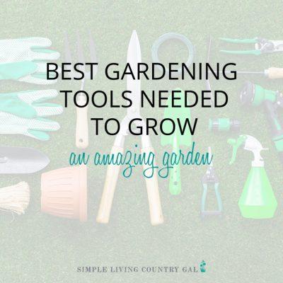 Best Gardening Tools Needed to Grow and Amazing Vegetable Garden