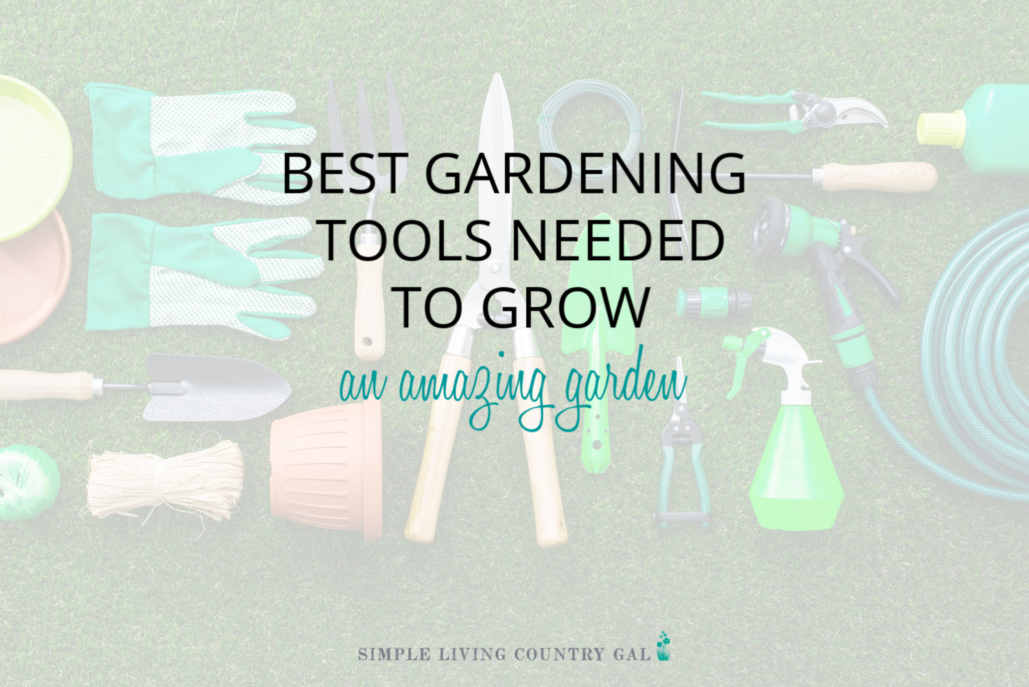 Best Gardening Tools Needed to Grow and Amazing Vegetable Garden
