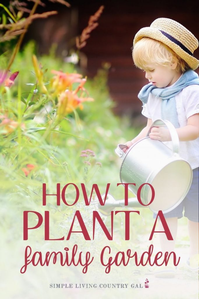Pass your gardening skills ion to your little ones. Teach your kids and grandkids to grow their food! There are many benefits of gardening with children with more grandparents helping out in the family home finding an activity they enjoy to do with young children is important. Why not try gardening? Find out how to garden with children so you can enjoy it as much as they do! #gardeningwithchildren #familygardening #gardening #patiogarden