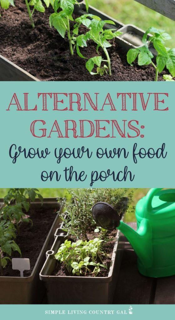Urban gardening DIY