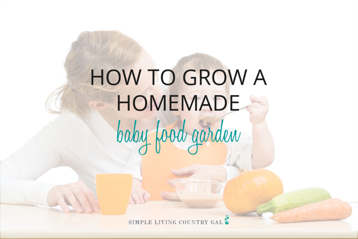 How to Grow a Baby Food Garden