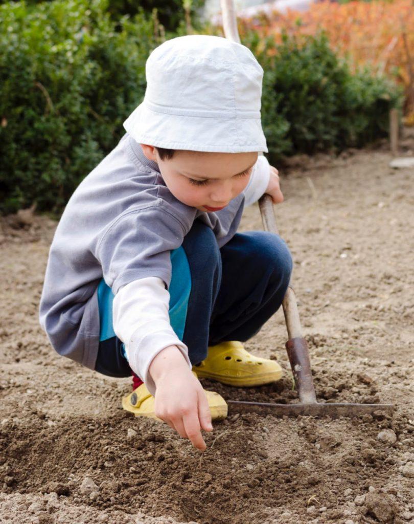 young boy shoveling a garden in a tips for preschool garden