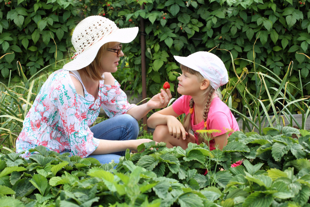 mother and daughter eating strawberries in a family garden