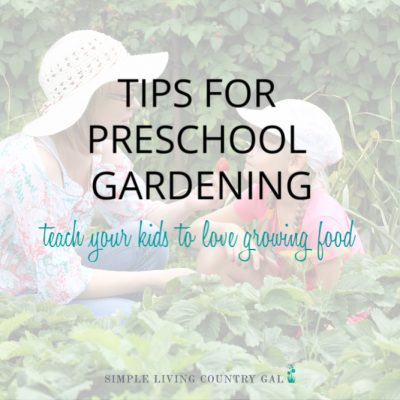 tips on a preschool garden