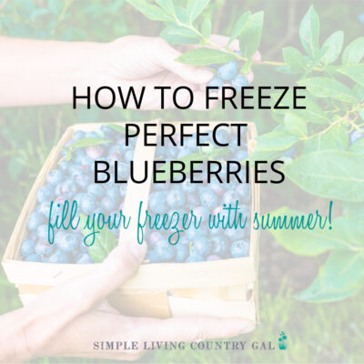Hw to freeze blueberries