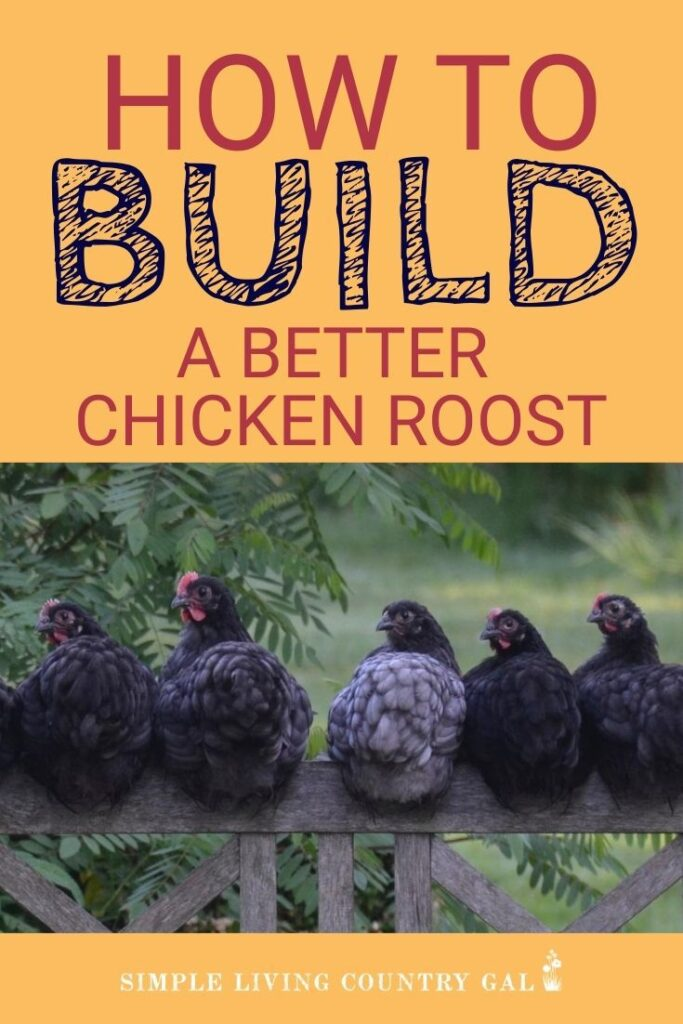 how to build a better chicken roost