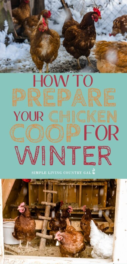 Get your chicken coop ready for winter
