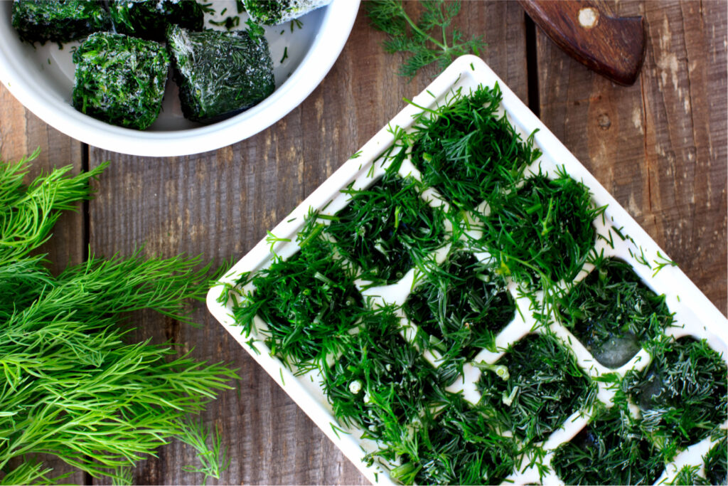 freezing dill in an ice cube tray