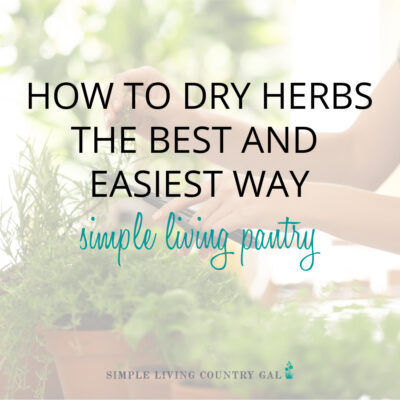 how to dry herbs the best and easiest way