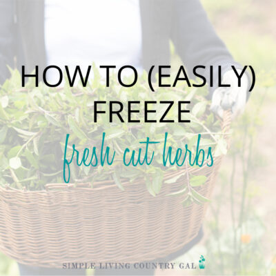 How to freeze fresh herbs step by step