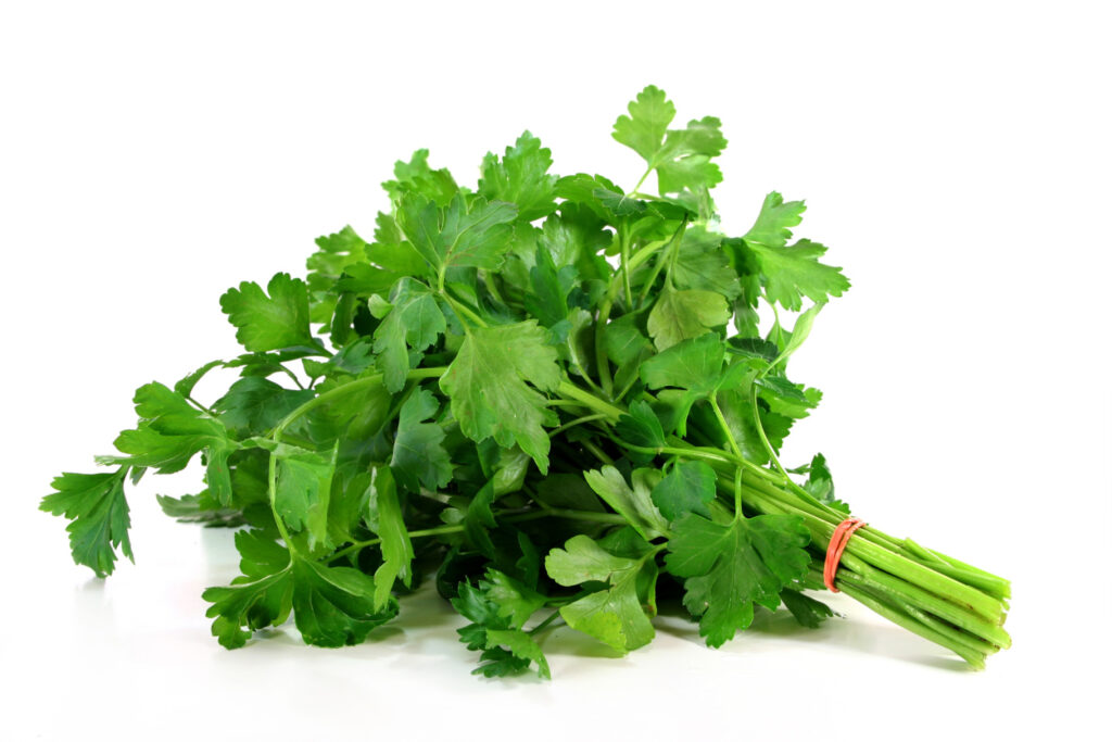 a bunch of parsley on a white background