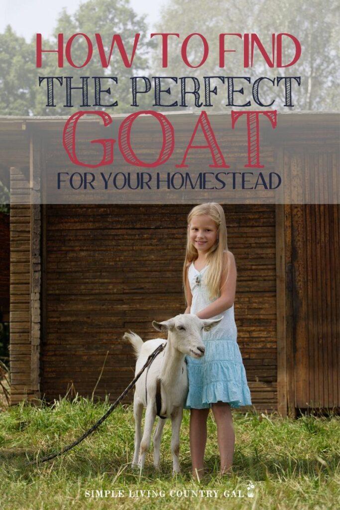 goat breeds 101