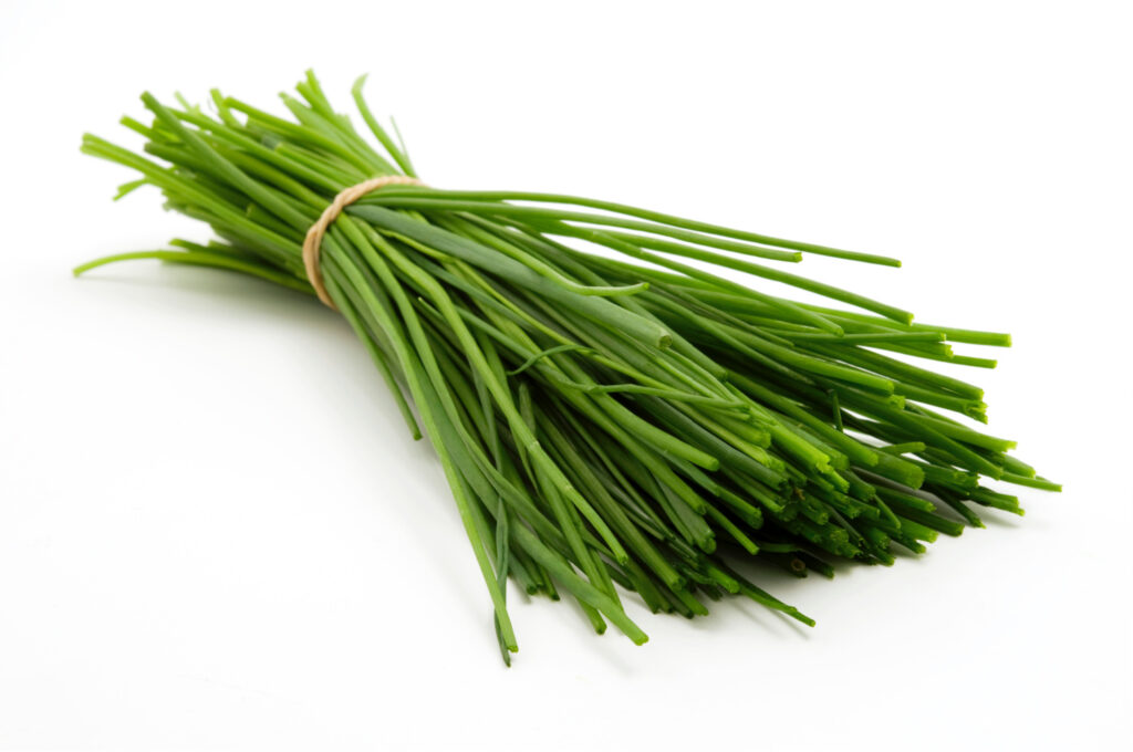 chives fresh herbs