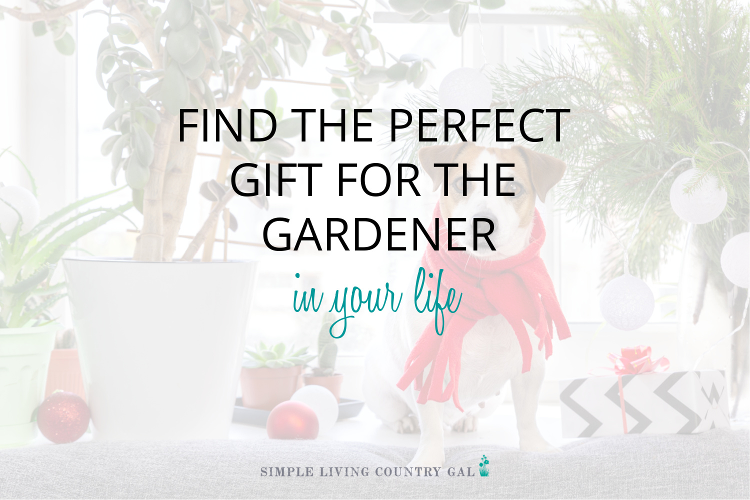Gift Ideas for the Vegetable Gardener