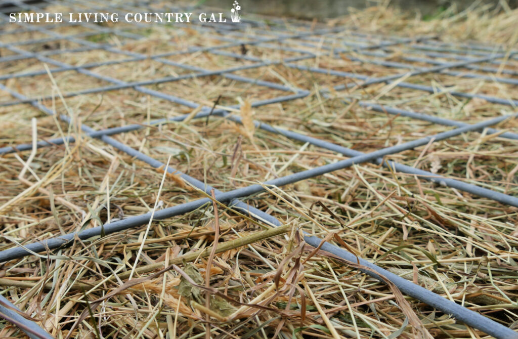 fencing on a garden to map out square foot