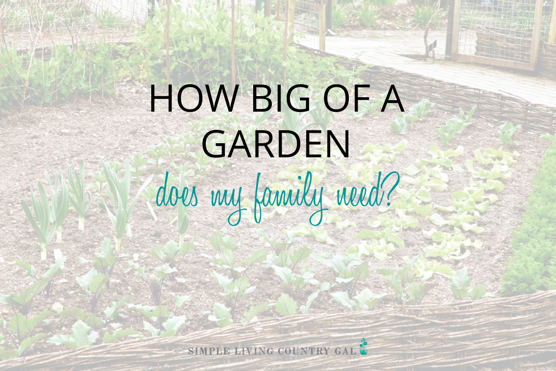 Vegetable Garden Size. How Big of a Garden do I Need?